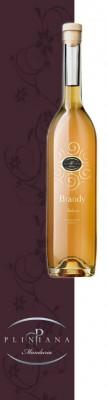 brandy2 107x400 Design grafica etichette vino   Cantine Pliniana (Ta)