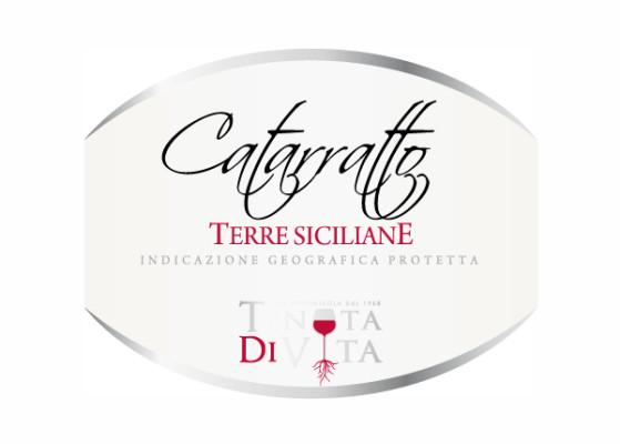 progetto etichetta catarratto 559x400 Grafica etichette vino   Tenuta di vita   Trapani