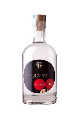 progetto etichetta grappa 266x400 Etichetta Grappa   Vignuolo